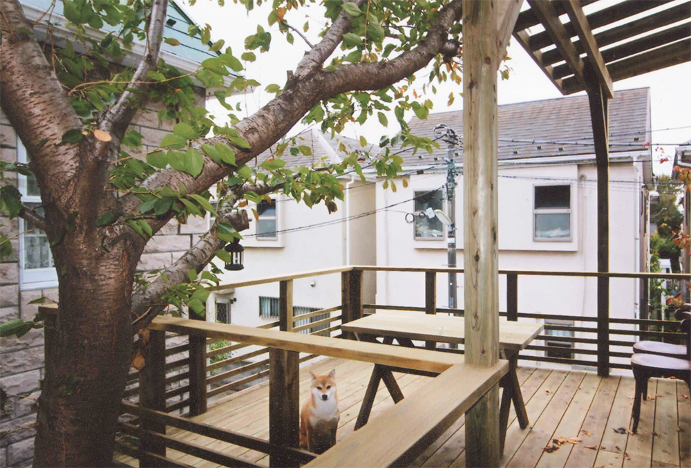 東京都世田谷区N様邸 桜の木とパーゴラとフェンスの調和が美しいデザインデッキ